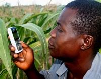 Receiving mobile phone updates